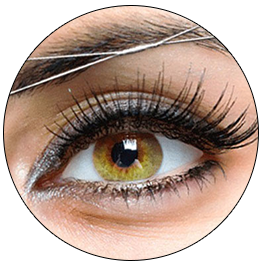 10% Off Eyebrow Threading or Eyebrow Waxing